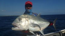 fishing-madagascar-GT-Dogtooth-doggy-popper-jig-peche-sportive-nosy-be-nosybe-napoleon (103)