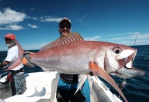 fishing-madagascar-GT-Dogtooth-doggy-popper-jig-peche-sportive-nosy-be-nosybe-napoleon (117)