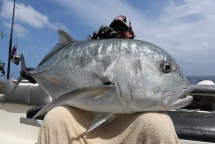 fishing-madagascar-GT-Dogtooth-doggy-popper-jig-peche-sportive-nosy-be-nosybe-napoleon (118)