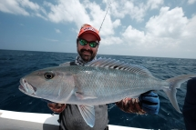 fishing-madagascar-GT-Dogtooth-doggy-popper-jig-peche-sportive-nosy-be-nosybe-napoleon (119)