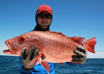 fishing-madagascar-GT-Dogtooth-doggy-popper-jig-peche-sportive-nosy-be-nosybe-napoleon (14)