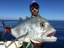 fishing-madagascar-GT-Dogtooth-doggy-popper-jig-peche-sportive-nosy-be-nosybe-napoleon (39)