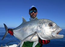 fishing-madagascar-GT-Dogtooth-doggy-popper-jig-peche-sportive-nosy-be-nosybe-napoleon (41)