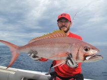 fishing-madagascar-GT-Dogtooth-doggy-popper-jig-peche-sportive-nosy-be-nosybe-napoleon (46)