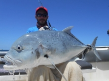 fishing-madagascar-GT-Dogtooth-doggy-popper-jig-peche-sportive-nosy-be-nosybe-napoleon (66)