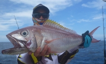fishing-madagascar-GT-Dogtooth-doggy-popper-jig-peche-sportive-nosy-be-nosybe-napoleon (82)