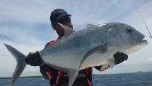 fishing-madagascar-GT-Dogtooth-doggy-popper-jig-peche-sportive-nosy-be-nosybe-napoleon (83)