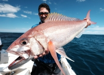 fishing-madagascar-GT-Dogtooth-doggy-popper-jig-peche-sportive-nosy-be-nosybe-napoleon (92)